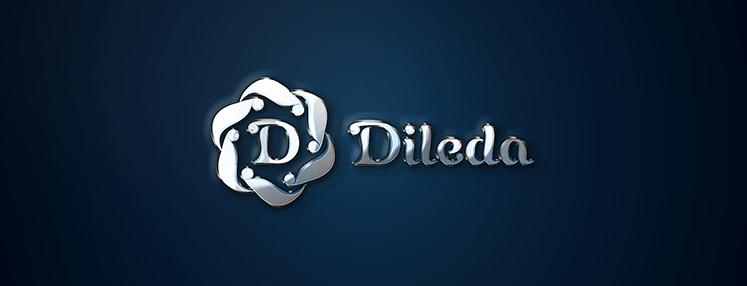 dileda logo